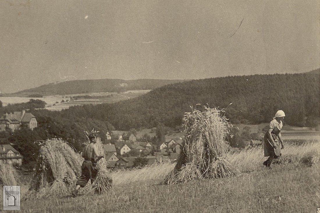 Landwirtschaft in alten Zeiten