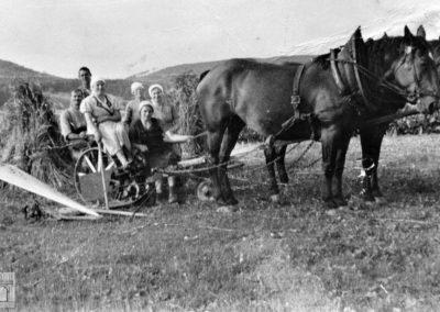 Personalintensive Getreideernte mit der Mähmaschine