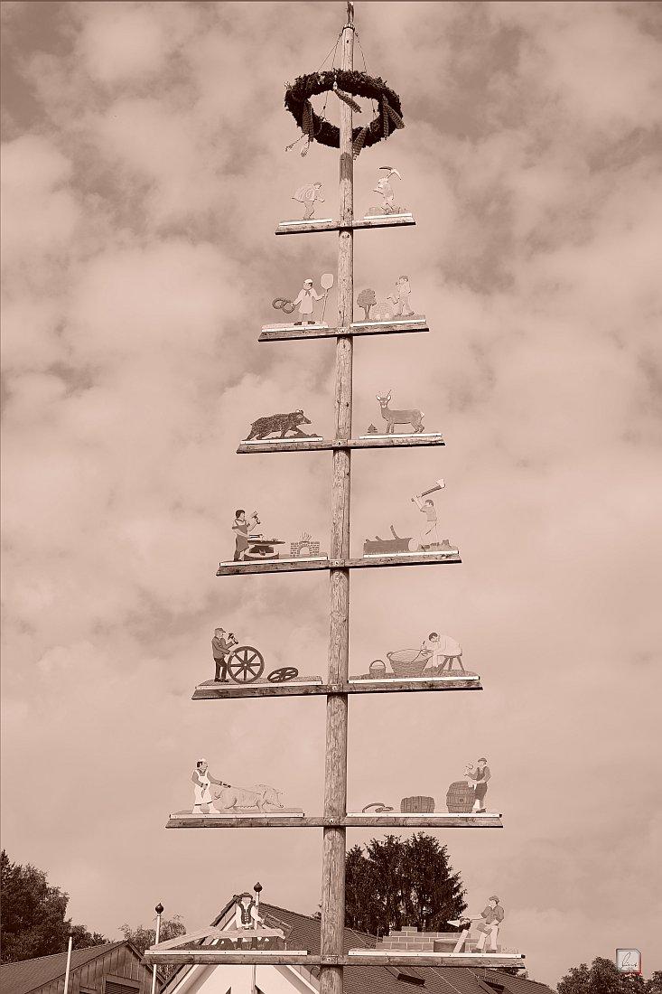 Sailauf-Ständebaum